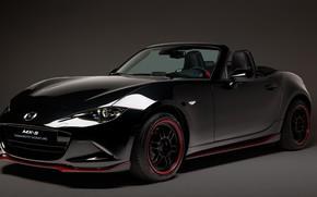 Picture Mazda, 2018, MX-5, Yamamoto Signature