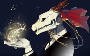 Picture magic, skull, art, fascinator, Mahou Tsukai no Yome, Bride of the sorcerer