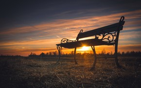 Picture sunset, nature, bench