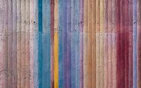 Wallpaper texture, color, Board, tree
