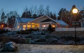 Wallpaper lights, the evening, winter, lights, home, trees, Sweden