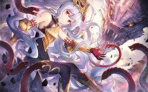 Picture girl, dragon, anime, grey hair
