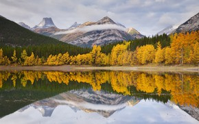 Picture autumn, trees, landscape, mountains, lake, forest