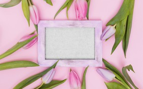 Picture flowers, frame, tulips, pink, fresh, wood, pink, flowers, tulips, spring, tender, frame