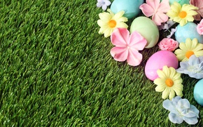 Picture grass, flowers, Easter, flowers, spring, Easter, eggs, decoration, Happy, the painted eggs