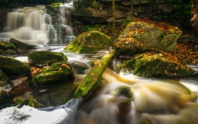 Picture autumn, leaves, river, stones, waterfall, moss, cascade, West Virginia, West Virginia, Elakala Falls, Blackwater Falls ...