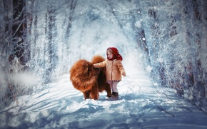 Wallpaper winter, snow, child, dog, girl, shawl, Chow, coat