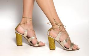 Picture legs, female, heels