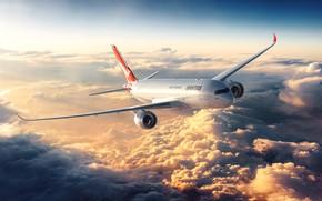 Wallpaper flight, the sky, Flight of the bird, the plane, clouds