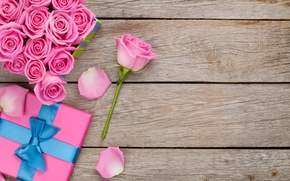 Wallpaper valentine`s day, love, roses, sweet, pink, romantic, gift, roses, petals