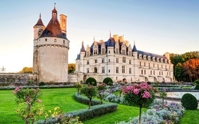 Picture grass, flowers, castle, the Loire valley