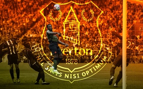 Picture wallpaper, sport, football, player, Everton FC, Romelu Lukaku
