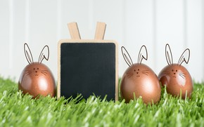 Picture eggs, spring, Easter, weed, Holiday