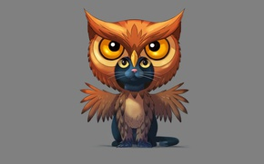 Wallpaper cat, savakot, owl, cat, owl, minimalism