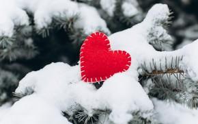 Picture winter, snow, love, heart, tree, red, love, heart, winter, snow, romantic, valentine, fir tree