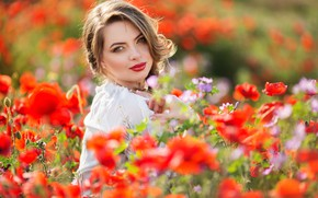 Picture field, summer, look, girl, flowers, Maki, hands, makeup, hairstyle, photoshoot, bokeh
