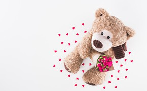 Picture flowers, toy, roses, petals, Bear