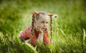 Picture summer, grass, look, nature, girl, freckles, braids, bows, dandelions, child, Which Nikulochkina
