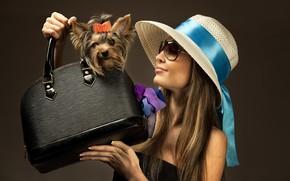 Picture girl, model, dog, makeup, glasses, hat, bag, Yorkshire Terrier