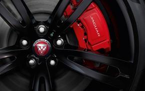 Picture face, Jaguar, logo, wheel, disk, bus, 2017, mount, XJR 575