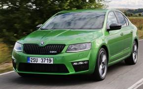 Picture road, asphalt, movement, vegetation, green, sedan, roadside, Skoda, 2013, Skoda, Octavia RS
