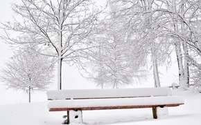 Picture winter, snow, bench
