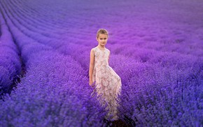 Picture field, nature, girl, lavender