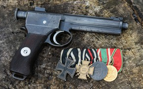 Picture automatic pistol, 1917, Roth Steyr
