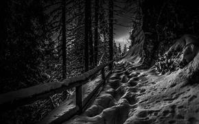 Picture winter, snow, Austria, Tyrol
