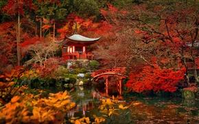 Picture trees, bridge, pond, Japan, garden, Kyoto, the temple Daigo-JI temple Bentendo Hall