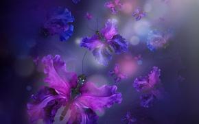 Wallpaper purple, butterflies, floral, butterfly, water, petals