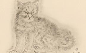 Picture cat, grey, gloomy, 1930, Tsuguharu, Fujita, The Book Of Cats