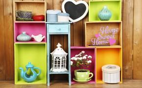 Picture flowers, colors, colorful, box, vase, design, flowers, interior, shelves, home, decoration, lantern