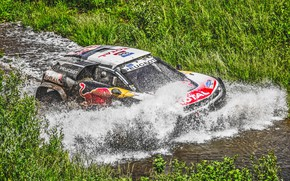 Picture Water, Sport, Speed, Race, Dirt, Peugeot, Squirt, Lights, Red Bull, Rally, Rally, Sport, DKR, Ford, …