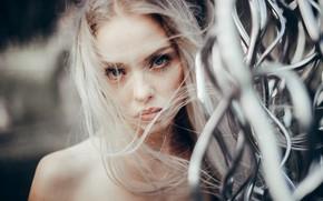 Picture look, face, hair, portrait, Susan Korzeniewska