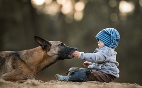 Picture background, dog, child
