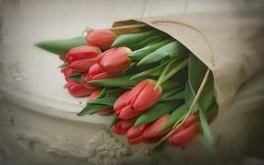 Picture retro, bouquet, tulips
