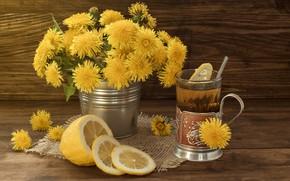 Picture yellow, lemon, tea, dandelions
