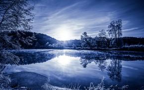 Picture trees, lake, Germany, Bayern, Zirndorf
