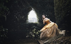 Picture dress, brown hair, Belle