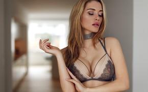 Wallpaper chest, pose, model, makeup, hairstyle, blonde, beauty, bra, bokeh, sexy, Anna Opsal, Mikkel Laumann