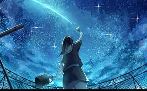 Picture roof, night, back, the fence, schoolgirl, brush, telescope, starry sky, bucket