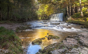 Picture forest, river, waterfall, Wales