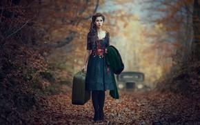 Picture machine, auto, autumn, girl, mood, foliage, dress, suitcase, waiting, Monica Lazar