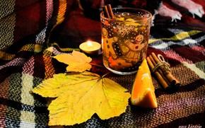 Picture cinnamon, autumn mood, autmn, cup of tea, spicy tea, tea with orange, orange tea
