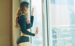 Picture ass, model, sponge, the beauty, Miranda Obregón