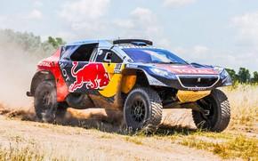 Picture Sand, 2008, Sport, Speed, Race, Dirt, Peugeot, Lights, Red Bull, Rally, Dakar, Dakar, Rally, Sport, …