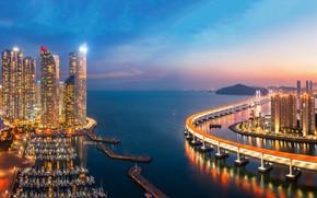 Picture sea, sunset, bridge, building, port, night city, skyscrapers, South Korea, harbour, South Korea, Busan, Busan, …