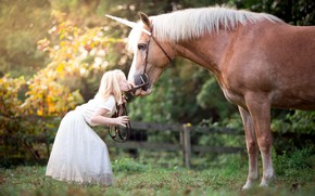Picture kiss, girl, horses
