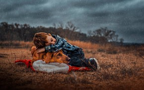 Picture rain, dog, boy, friendship, friends